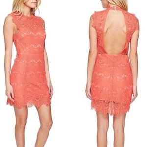 Free People Daydream Bodycon Lace Slip Coral Dress